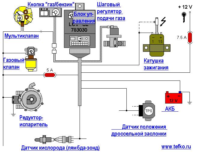 ГБО 2 поколения Loveco